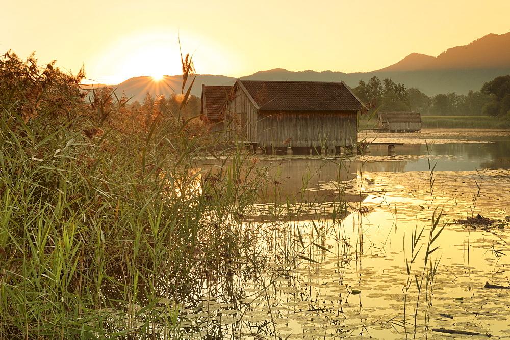 Boathouses at Kochelsee Lake at sunrise, Upper Bavaria, Bavaria, Germany - 1160-3924
