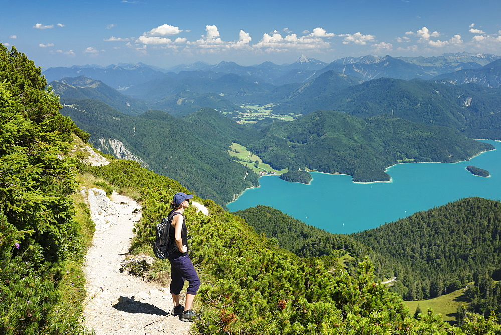 Hiker enjoying the view to Walchensee Lake on trail to Herzogstand mountain, Upper Bavaria, Bavaria, Germany, Europe