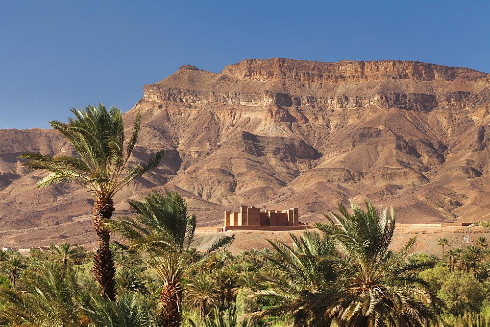 Tamnougalt Kasbah, Draa Valley, Jebel Kissane behind, Zagora Province, Morocco, North Africa, Africa