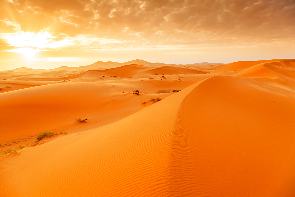 Erg Chebb at sunrise, Sahara Desert, Southern Morocco, North Africa, Africa