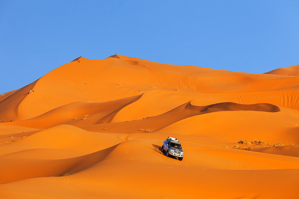 Off-Road Vehicle driving on Sand Dunes, Erg Chebbi, Sahara Desert, Southern Morocco, Morocco, Africa