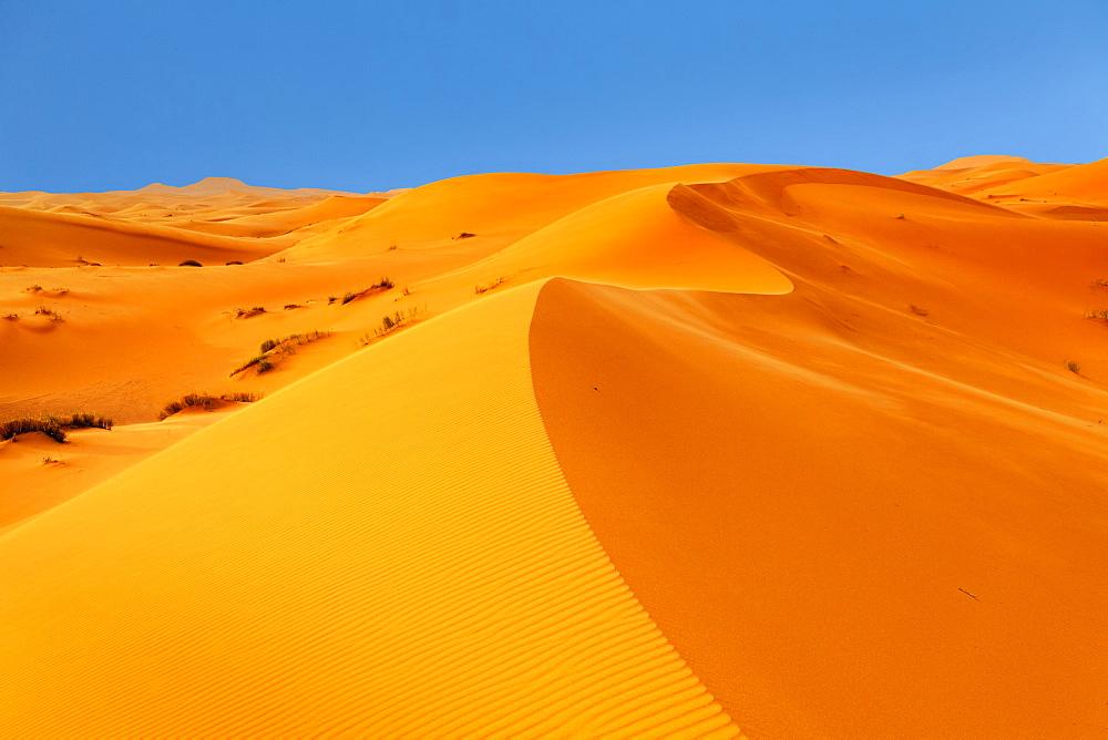 Sand Dunes, Erg Chebbi, Sahara Desert, Southern Morocco, Morocco, North Africa, Africa