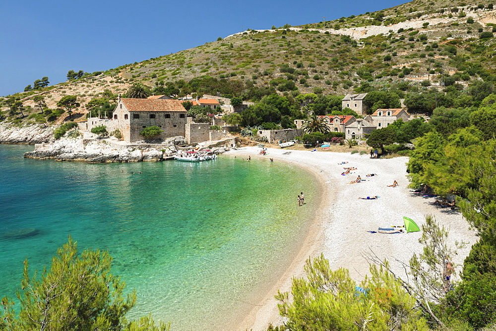 Dubovica bay and beach, Hvar Island, Dalmatia, Croatia, Europe - 1160-4184
