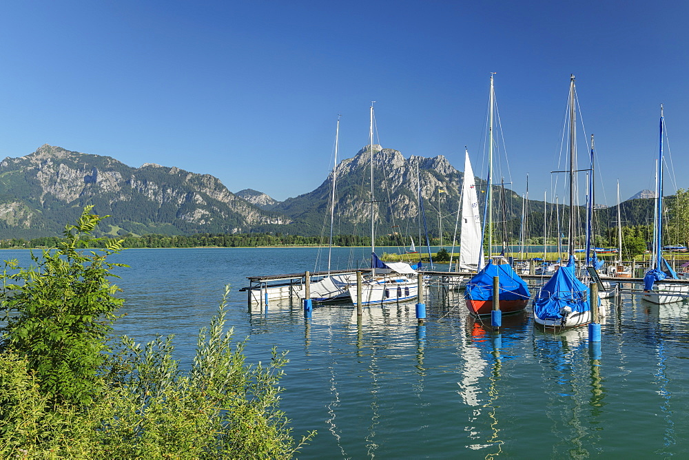 Forggensee Lake, Tannheimer Alps, Fussen, Allgau, Schwaben, Bavaria, Germany, Europe
