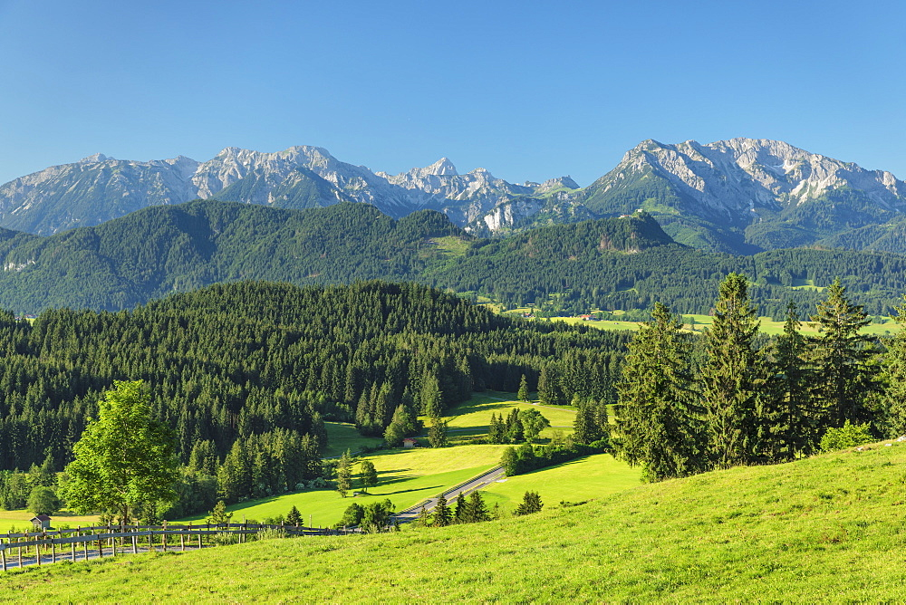 View from Schlossbergalm to Allgau Alps, Zell, Allgau, Schwaben, Bavaria, Germany, Europe
