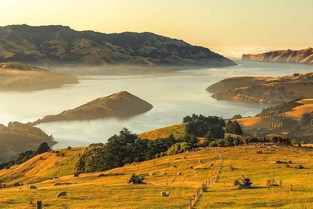 Banks Peninsula at sunrise, Canterbury, South Island, New Zealand, Oceania