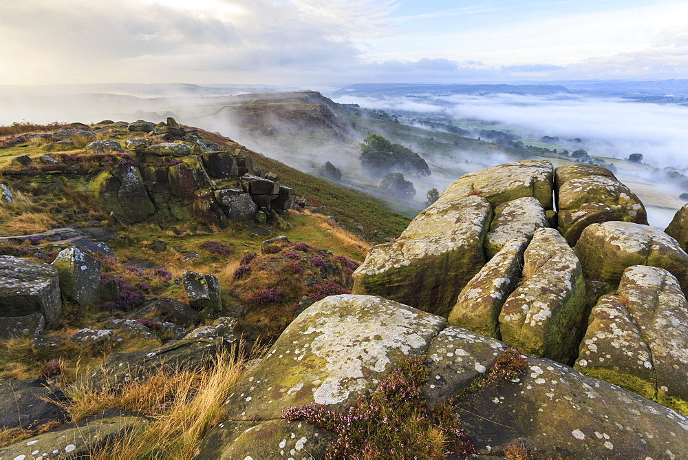 Early morning fog, Curbar Edge with view to Baslow Edge, Peak District National Park, late summer heather, Derbyshire, England, United Kingdom, Europe