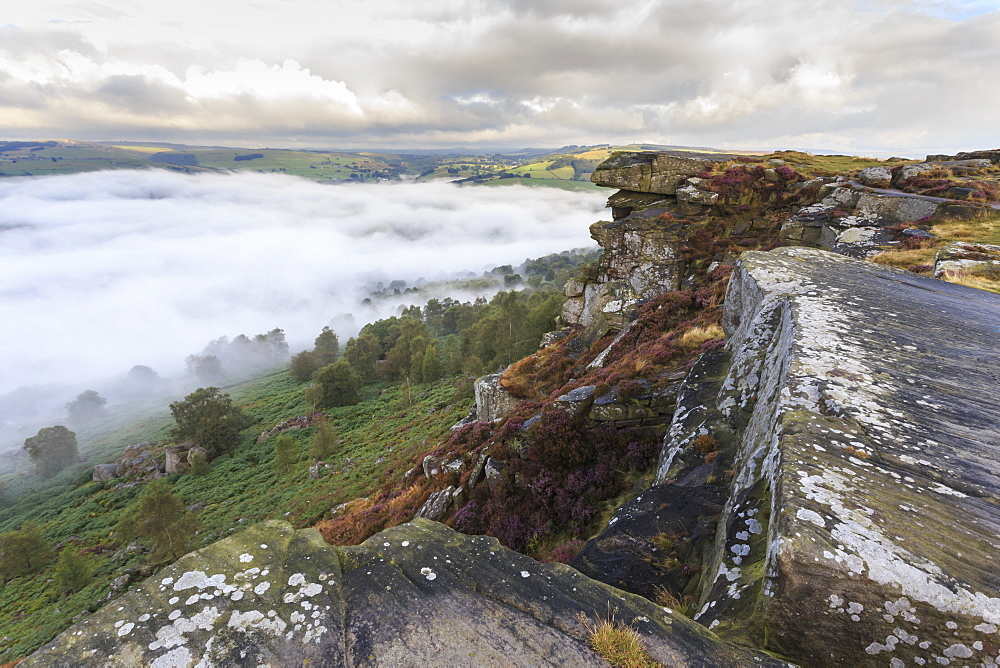 Early morning fog, partial temperature inversion, Curbar Edge, Peak District National Park, summer heather, Derbyshire, England, United Kingdom, Europe