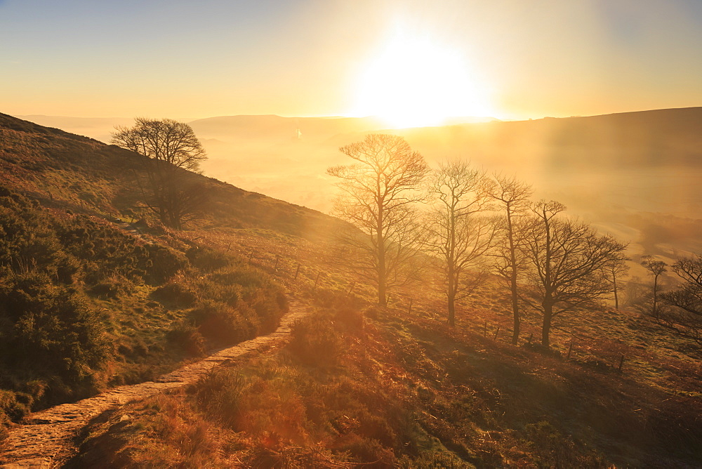 Misty and frosty sunrise over skeletal trees above the Hope Valley in winter, Castleton, Peak District, Derbyshire, England, United Kingdom, Europe