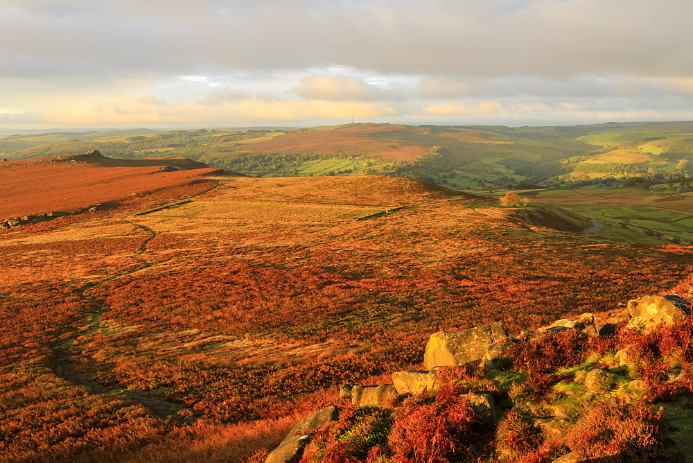 Hathersage Moor from Higger Tor, sunrise, Peak District National Park, Autumn, Derbyshire, England - 1167-1581