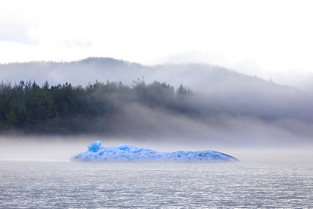 Bright blue iceberg from Mendenhall Glacier, surrounded by mist on Mendenhall Lake, Juneau, Alaska, United States of America, North America