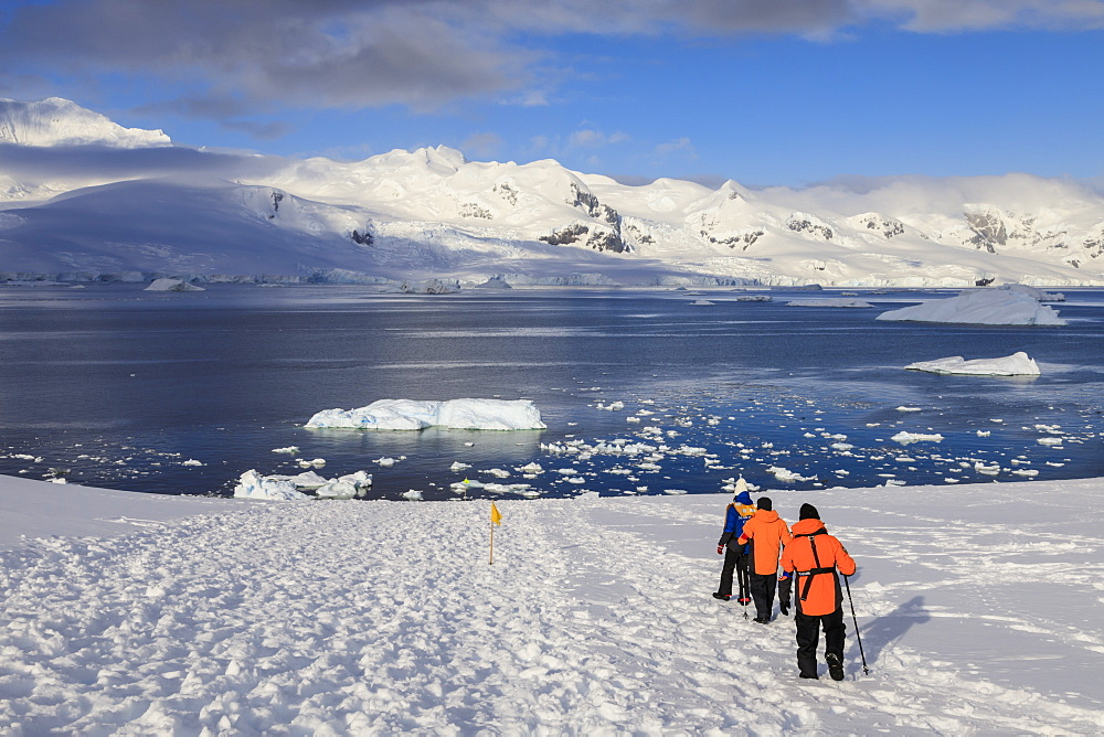 Expedition ship passengers trek above the sea, early morning, sunny day, Neko Harbour, Andvord Bay, Graham Land, Antarctica