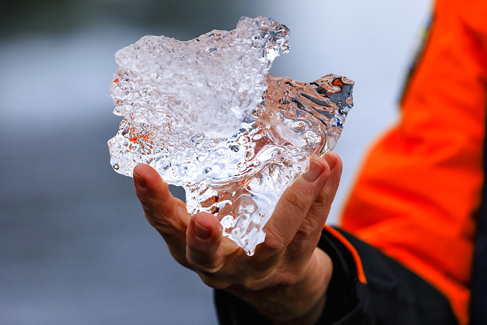 Detail of an expedition passenger holding a piece of glacier ice, Anvers Island, Antarctic Peninsula, Antarctica