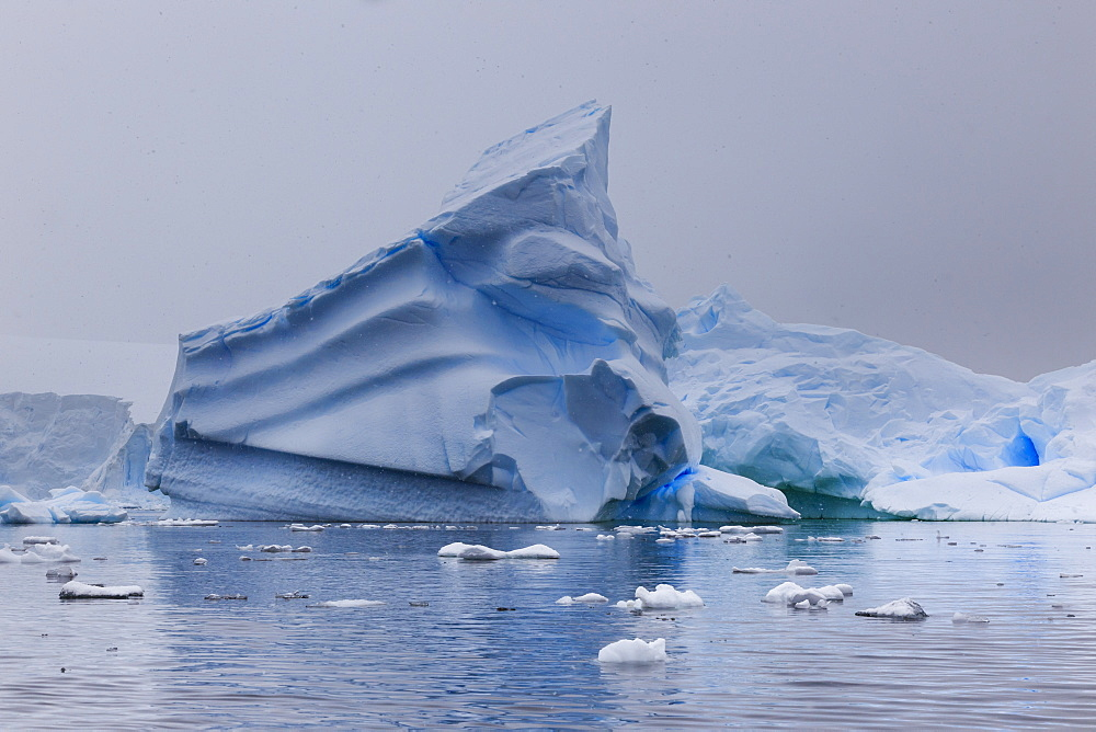 Blue icebergs in snowy weather, from sea level, Waterboat Point, Paradise Bay, Graham Land, Antarctic Peninsula, Antarctica, Polar Regions - 1167-1811