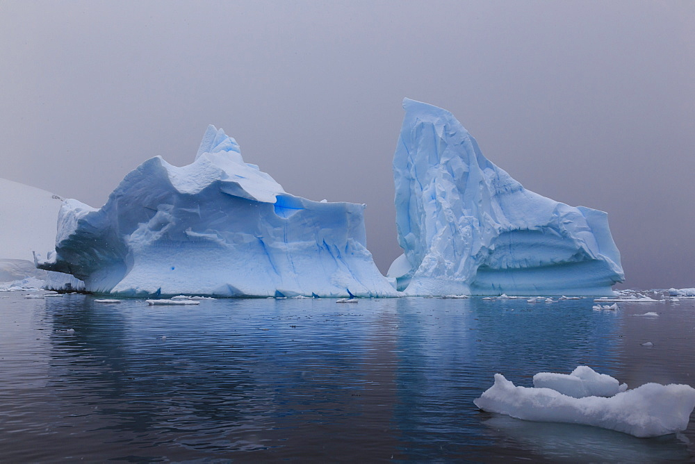 Blue icebergs in snowy weather, from sea level, Waterboat Point, Paradise Bay, Graham Land, Antarctic Peninsula, Antarctica, Polar Regions - 1167-1812