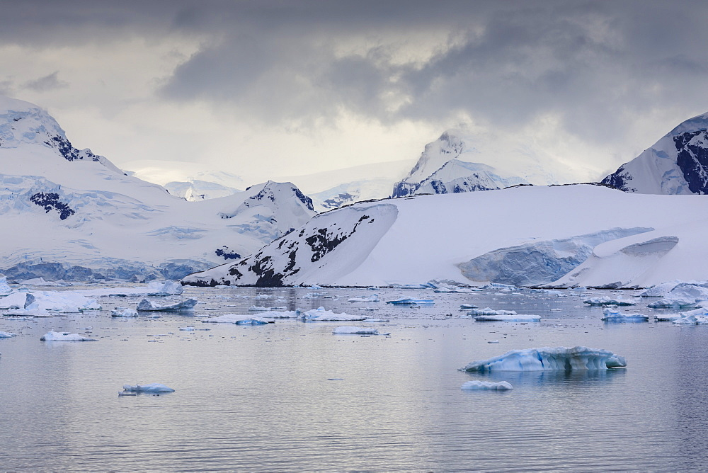 Spectacular mountains, glaciers and blue icebergs of Paradise Bay, water ripples, Graham Land, Antarctic Peninsula, Antarctica, Polar Regions - 1167-1813
