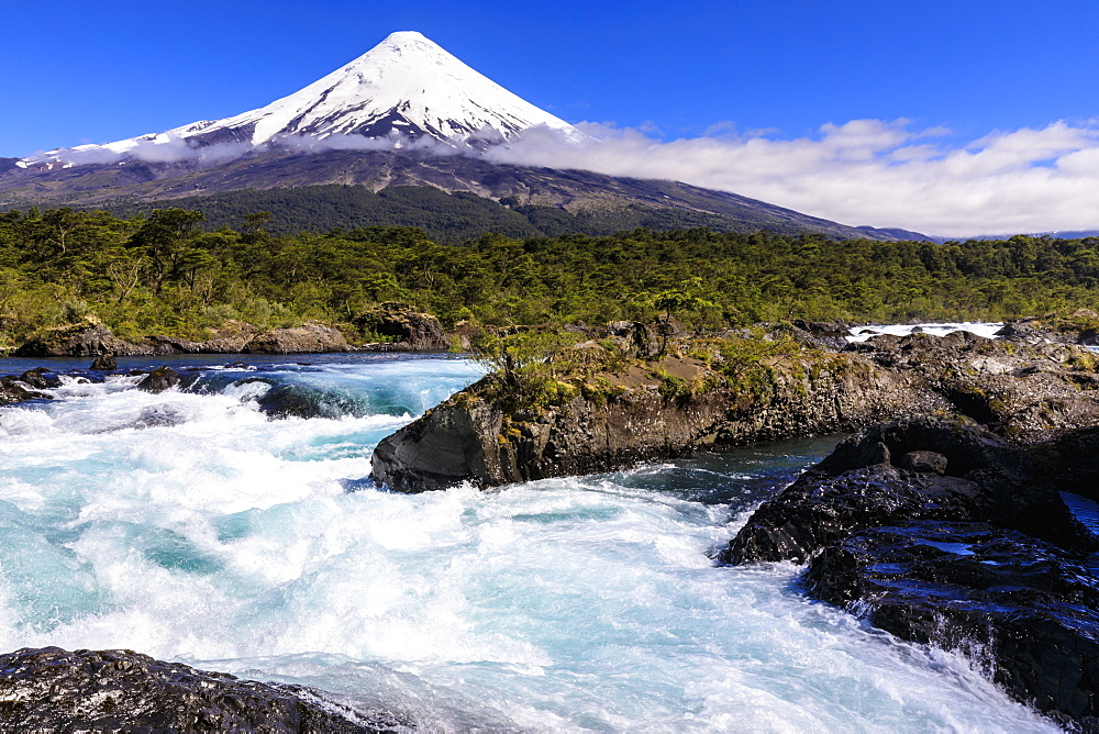 Petrohue rapids, snow-capped, conical Osorno volcano, Vicente Perez Rosales National Park, Spring, Lakes District, Chile, South America