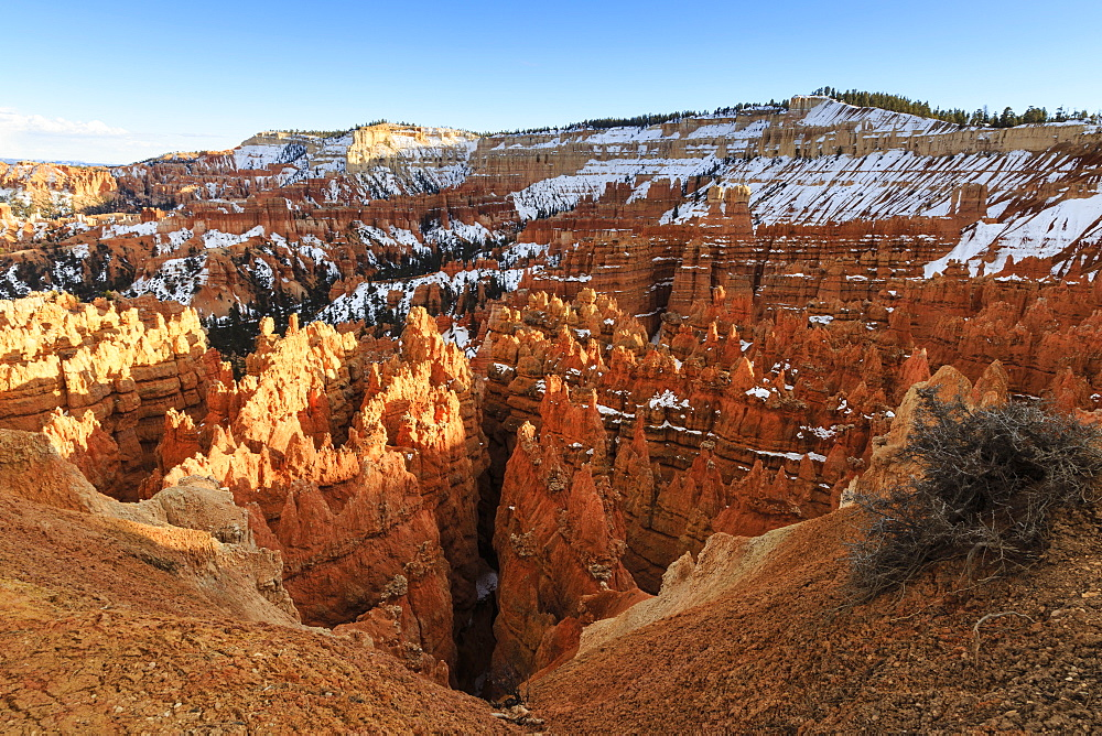 Hoodoos and cliffs with snow lit by late afternoon sun, from Rim Trail near Sunset Point, Bryce Canyon National Park, Utah, United States of America, North America