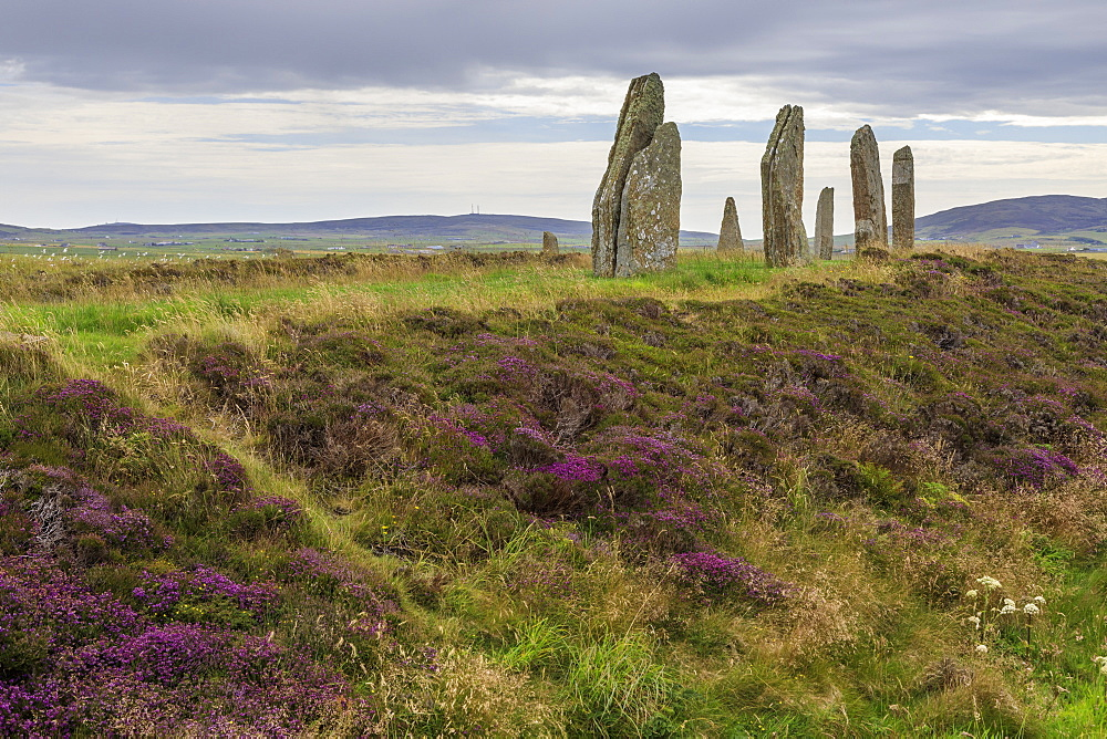 Ring of Brodgar, stone circle, 2500 years old, Heart of Neolithic Orkney UNESCO World Heritage Site, Orkney Islands, Scotland - 1167-1990