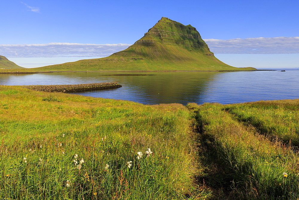 Kirkjufell Mountain and sea, cottongrass and Summer flowers, Grundarfjordur, good weather, Snaefellsnes Peninsula, Iceland
