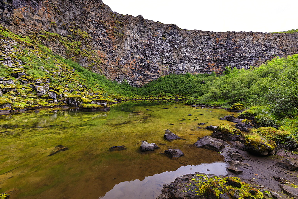 Botnstjorn pond, Skogarstigur trail, Asbyrgi (Shelter of the Gods), Jokulsargljufur canyon, Vatnajokull National Park, Iceland - 1167-2061