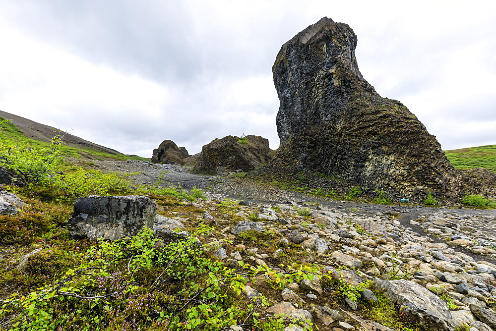 Columnar basalt and rosettes, Hljodaklettar, Jokulsargljufur Canyon, Vesturdalur, Vatnajokull National Park, North Iceland - 1167-2073