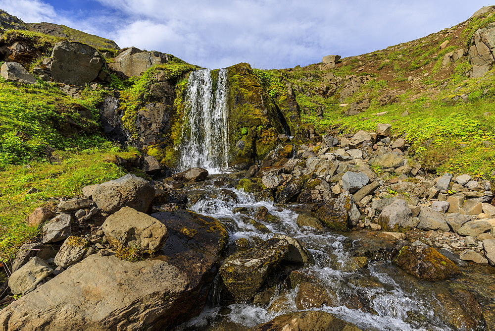 Waterfall, mosses and wild flowers in lush, green Hvanneyrarskal, hanging valley above Siglufjordur, Summer, North Iceland - 1167-2076