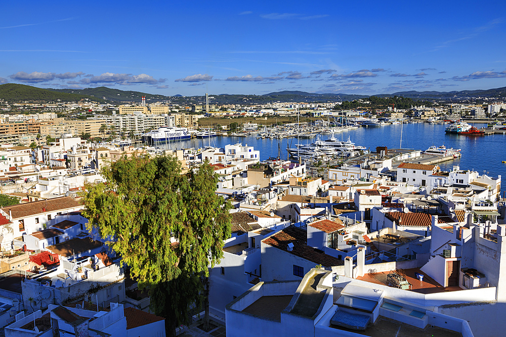 Historic whitewashed old town and harbour, from Dalt Vila, Ibiza Town, Eivissa, Balearic Islands, Spain, Mediterranean, Europe