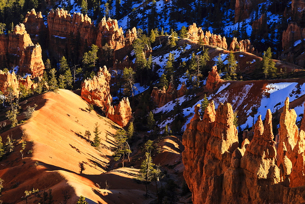 Hoodoos and pine trees with snow lit by late afternoon sun in winter, near Sunrise Point, Bryce Canyon National Park, Utah, United States of America, North America
