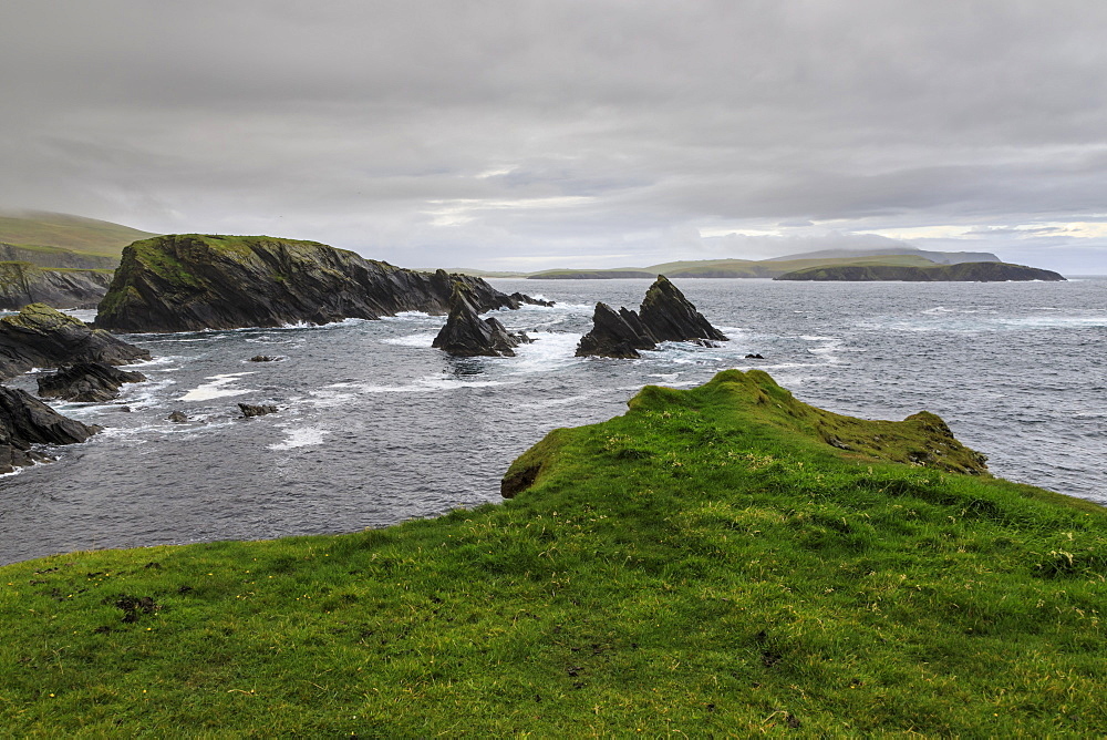 Coastal scenery, jagged cliffs and stacks, misty hills, St. Ninian's Isle, Bigton, South Mainland, Shetland Isles, Scotland, United Kingdom, Europe