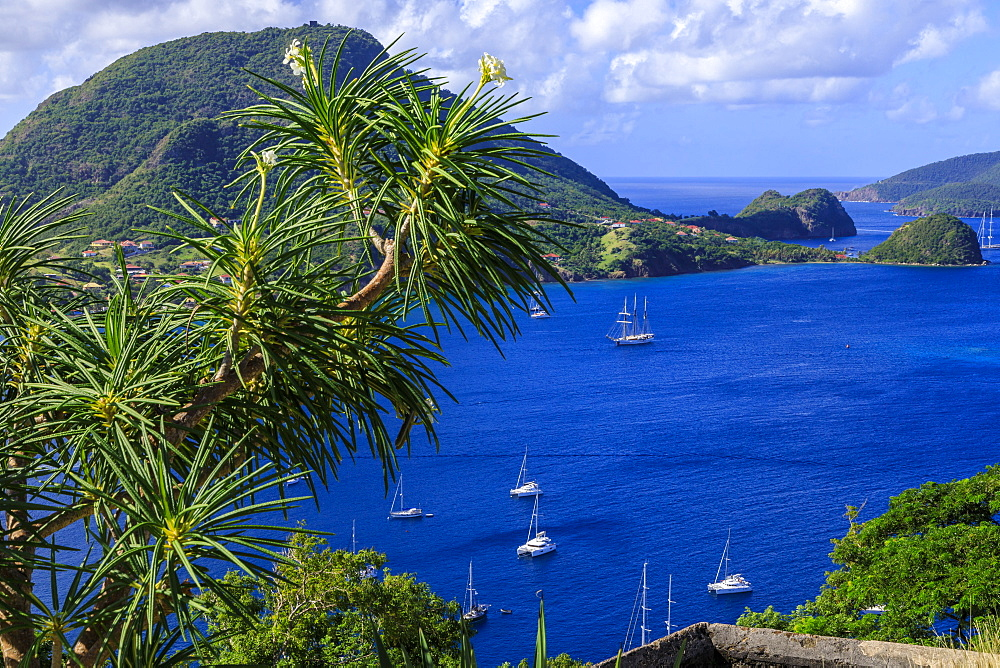 Beautiful Les Saintes Bay from Fort Napoleon, Bourg des Saintes, Terre de Haut, Iles Des Saintes, Guadeloupe, Leeward Islands, West Indies, Caribbean, Central America