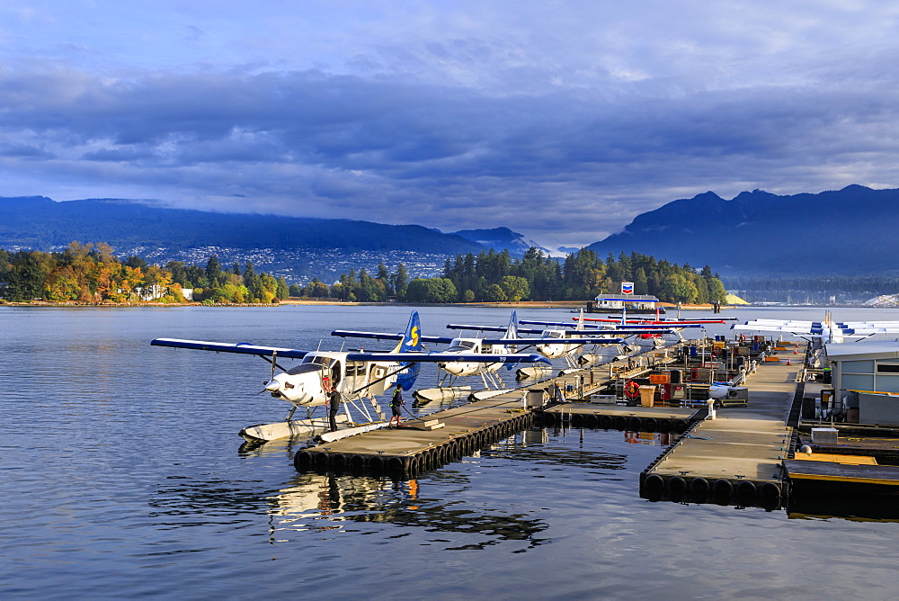 Seaplanes at Canada Place and Stanley Park, Autumn, early morning light, Downtown, Vancouver City, British Columbia, Canada