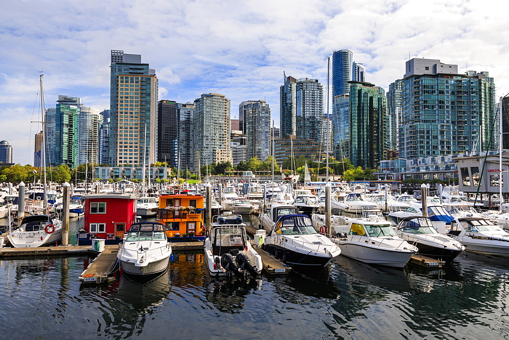 Marina at Coal Harbour, with leisure craft and house boats, city skyline, Vancouver, British Columbia, Canada, North America