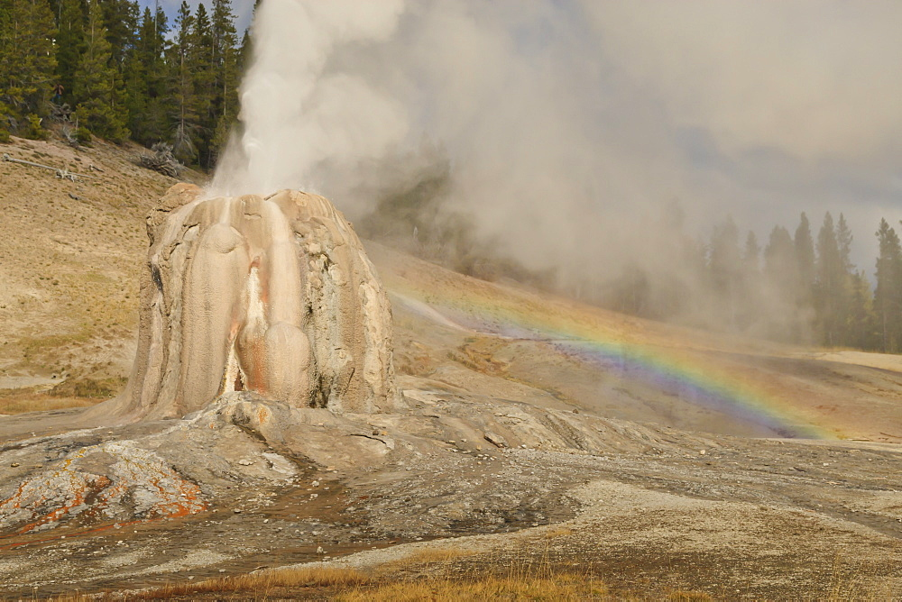 Lone Star Geyser erupts and creates rainbow, Yellowstone National Park, UNESCO World Heritage Site, Wyoming, United States of America, North America