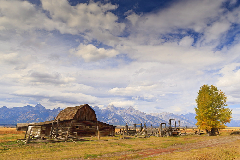 Mormon Row barn with Teton Range in autumn (fall), Antelope Flats, Grand Teton National Park, Wyoming, United States of America, North America
