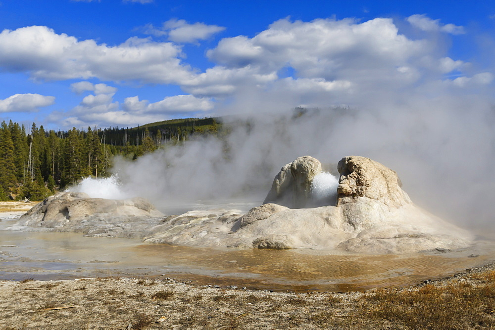 Rocket and Grotto cone geysers erupt, Upper Geyser Basin, Yellowstone National Park, UNESCO World Heritage Site, Wyoming, United States of America, North America