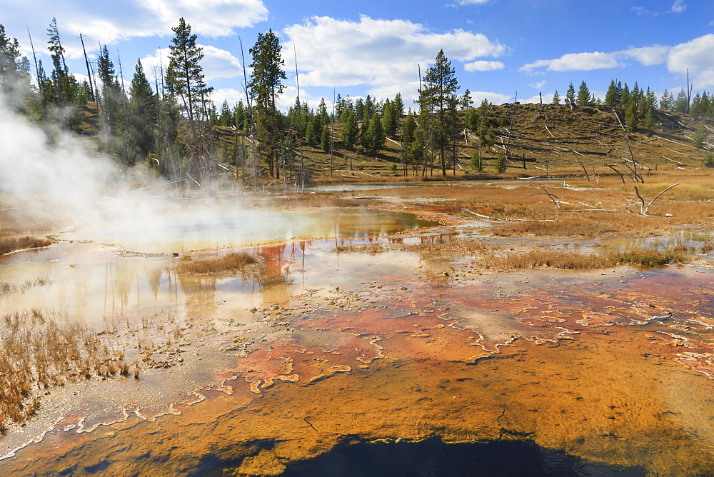 Colourful thermal features, Upper Geyser Basin, Yellowstone National Park, UNESCO World Heritage Site, Wyoming, United States of America, North America