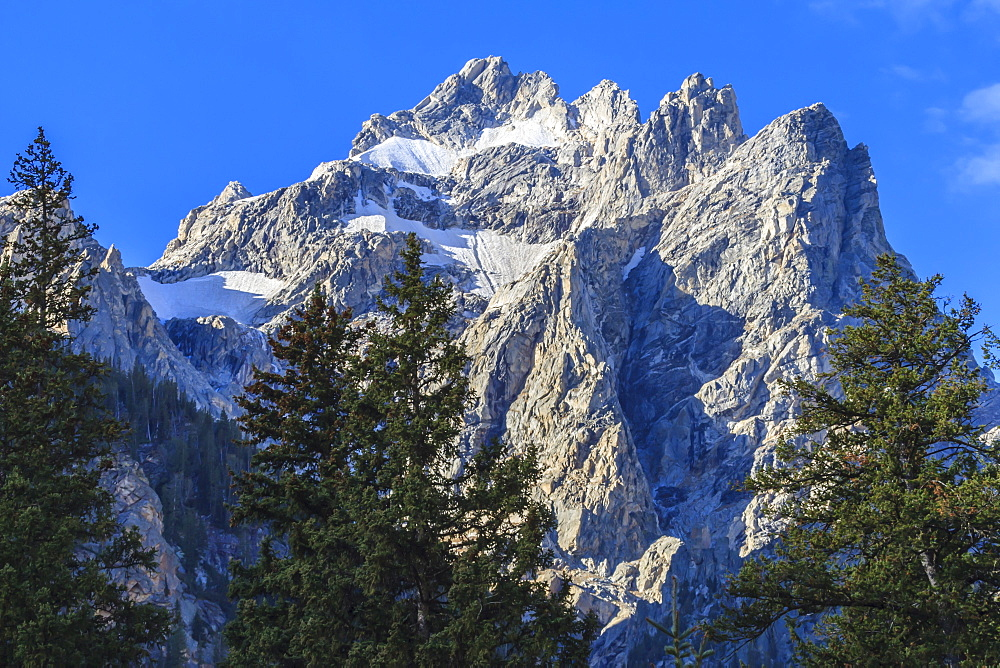 Mount Owen and pines from Cascade Canyon, Grand Teton National Park, Wyoming, United States of America, North America