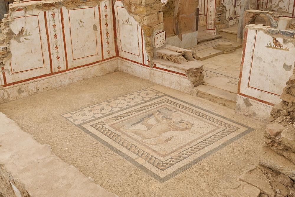 Lion mosaic, murals and frescoes in a Terrace House, Curetes Street, Ephesus, near Kusadasi, Anatolia, Turkey, Asia Minor, Eurasia