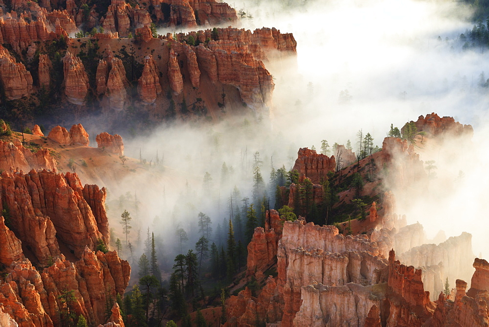 Pinnacles and hoodoos with fog extending into clouds of a partial temperature inversion, Bryce Canyon National Park, Utah, United States of America, North America