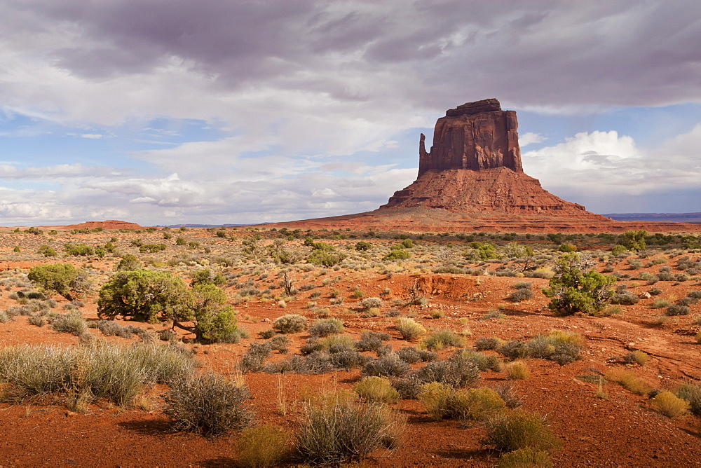 Mitten from the desert floor, late afternoon, Monument Valley Navajo Tribal Park, Utah Arizona border, United States of America, North America