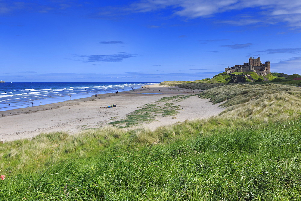 Bamburgh Castle across the dunes, early summer afternoon, Northumberland, England, United Kingdom, Europe