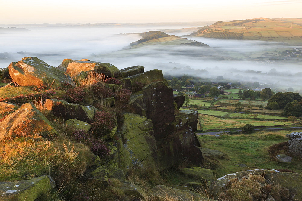 Mist folds over Curbar village, fields and woods from Curbar Edge with heather, autumn dawn, Peak District, Derbyshire, England, United Kingdom, Europe