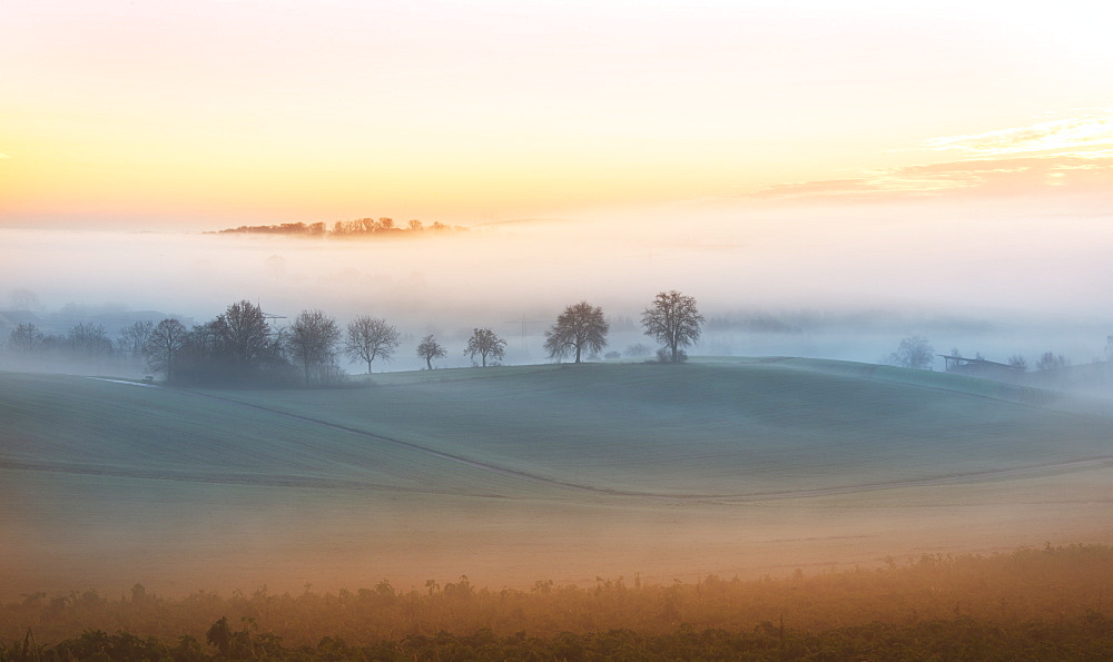 Layers of thick fog wafting across the rolling hills of Kraichgau region shortly after sunrise, Baden-Wurttemberg, Germany, Europe - 1171-231