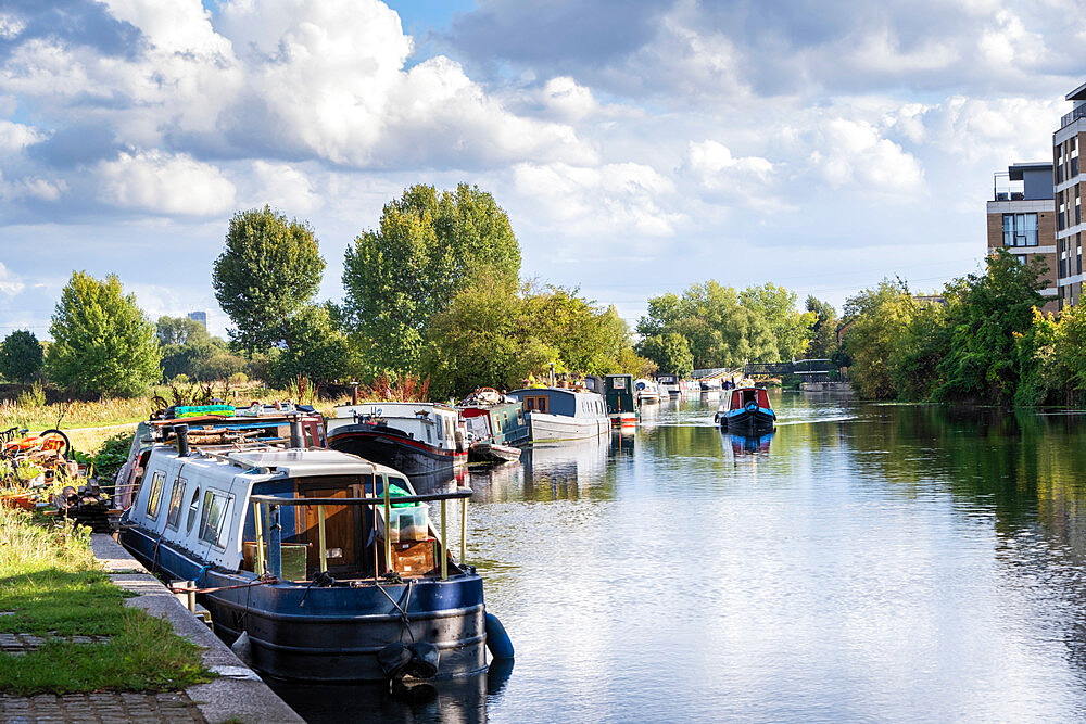 Summer shot of canal boats moored on the River Lea, East London, London, England, United Kingdom, Europe - 1176-1352
