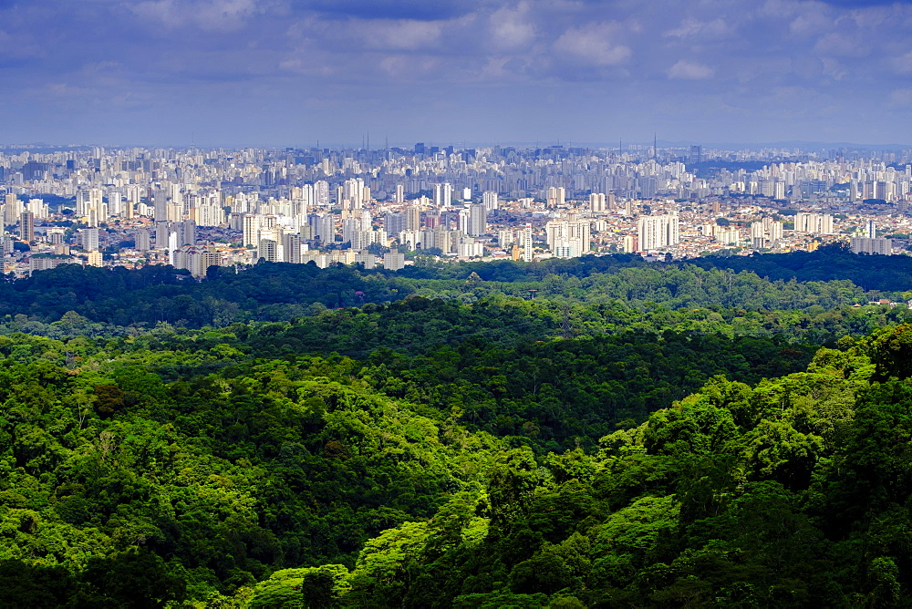 Central Sao Paulo from the rainforest of the Serra da Cantareira State Park, Brazil, South America