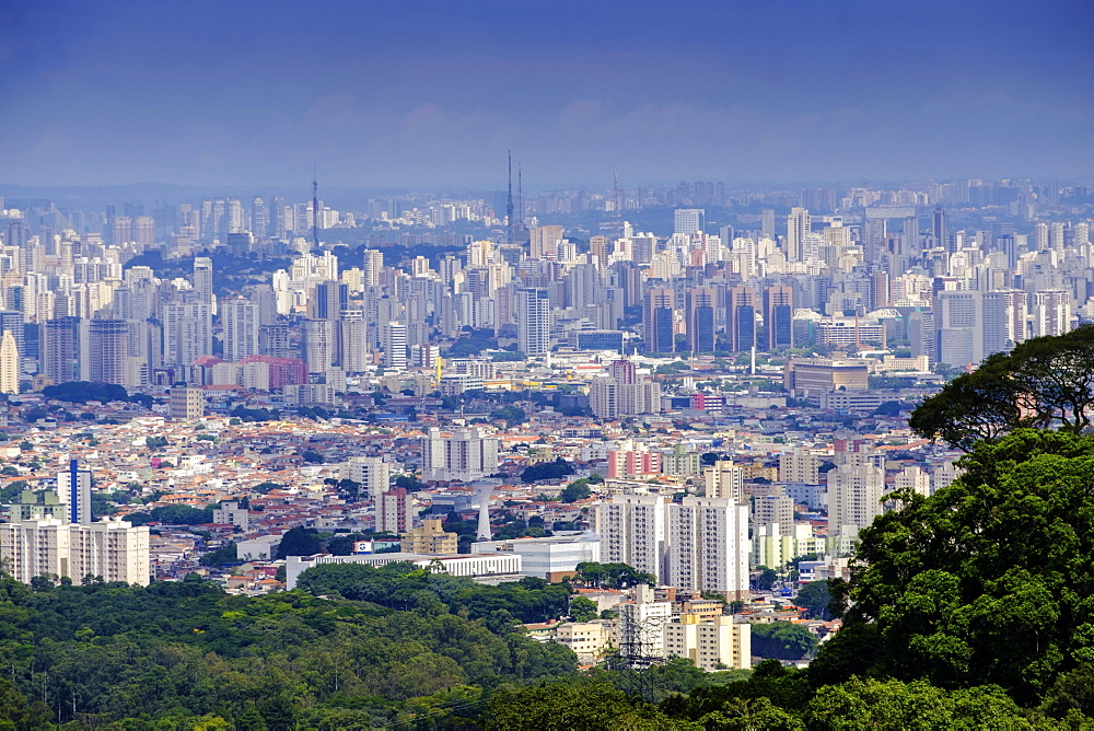 Central Sao Paulo from the rainforest of the Serra da Cantareira State Park, Sao Paulo, Brazil, South America