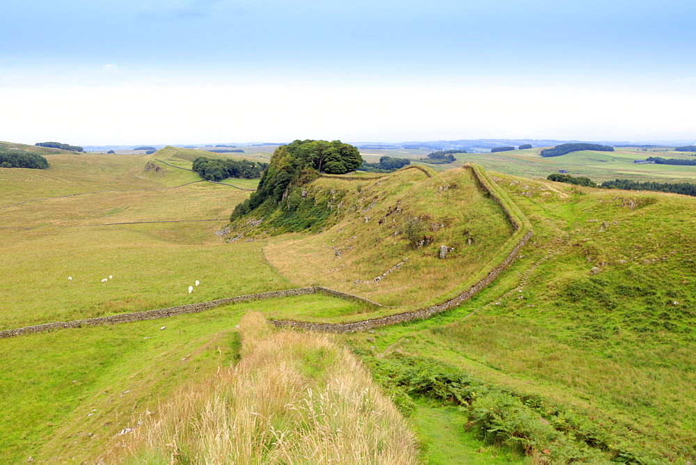 Hadrian's Wall UNESCO World Heritage Site, Northumberland, England, United Kingdom, Europe
