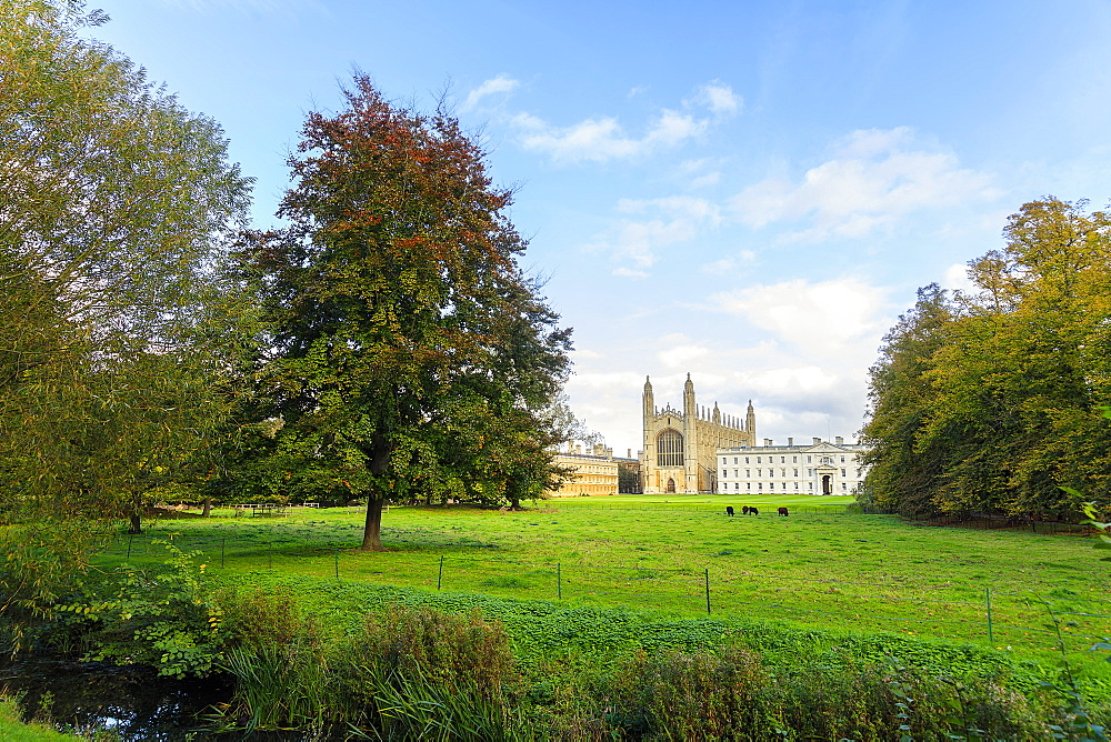 King's College Chapel from the Backs, Cambridge University, Cambridge, Cambridgeshire, England, United Kingdom, Europe - 1176-820