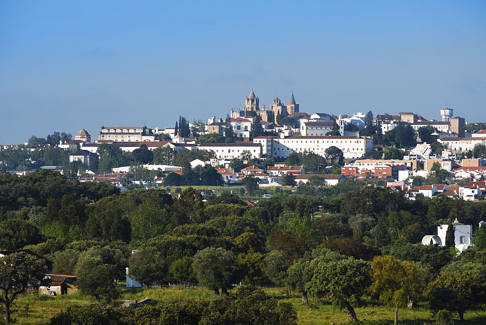 View of Evora city with cork oak fields in the foreground, Evora, Alentejo, Portugal, Europe